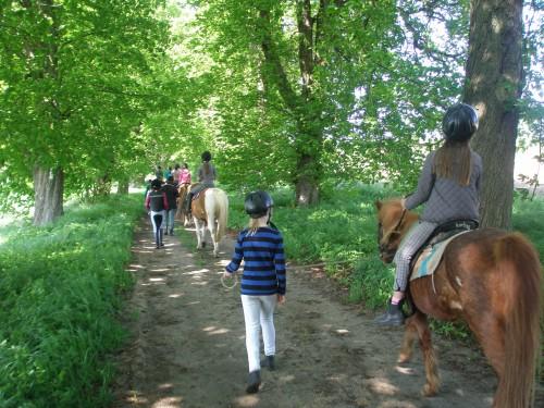 Mädchen auf den Pferden im Oskar-ReitCamp Born