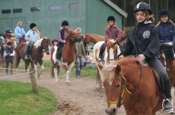 In den Reiterferien ist der Ausritt in der Gruppe einer der Höhepunkte.