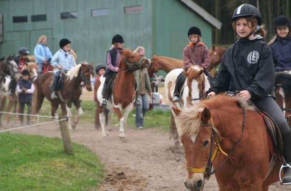 Gruppenritt bei den Reitferien Ostsee