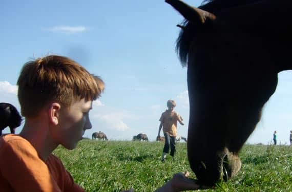 Einige Jungs sind in den Reiterferien fast immer dabei.