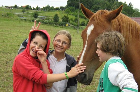 In den Reiterferien werden Kinder schnell mit Pferden vertraut.