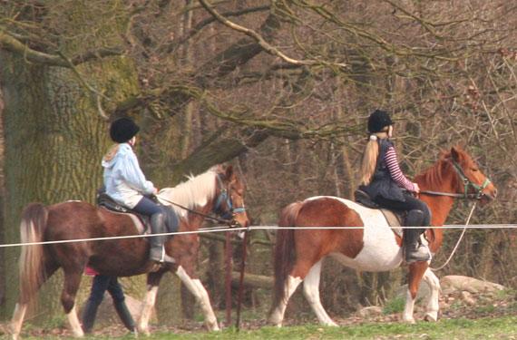 In den Reiterferien sitzen die Teilnehmer anfangs auf geführten Pferden.