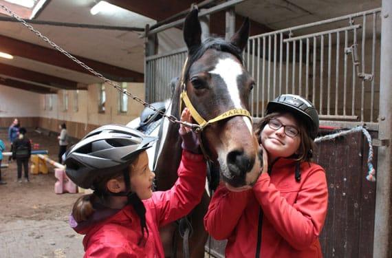 In den Reitferien wurde Pferd für den Reitunterricht fertig gemacht.
